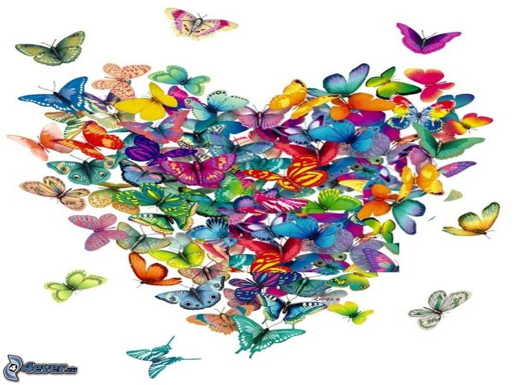 Cuore for Foto farfalle colorate