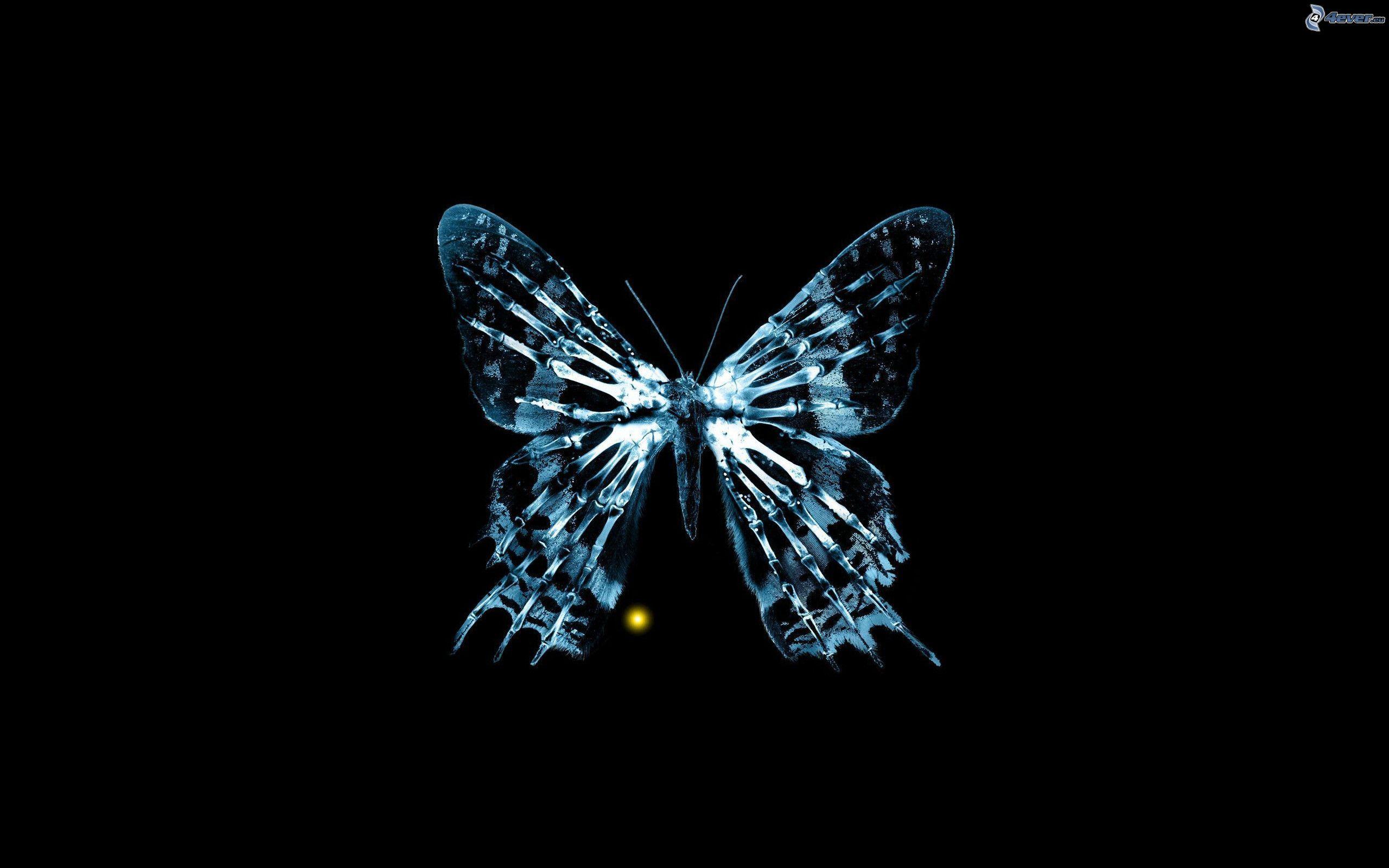 Conosciuto Farfalla blu XS81