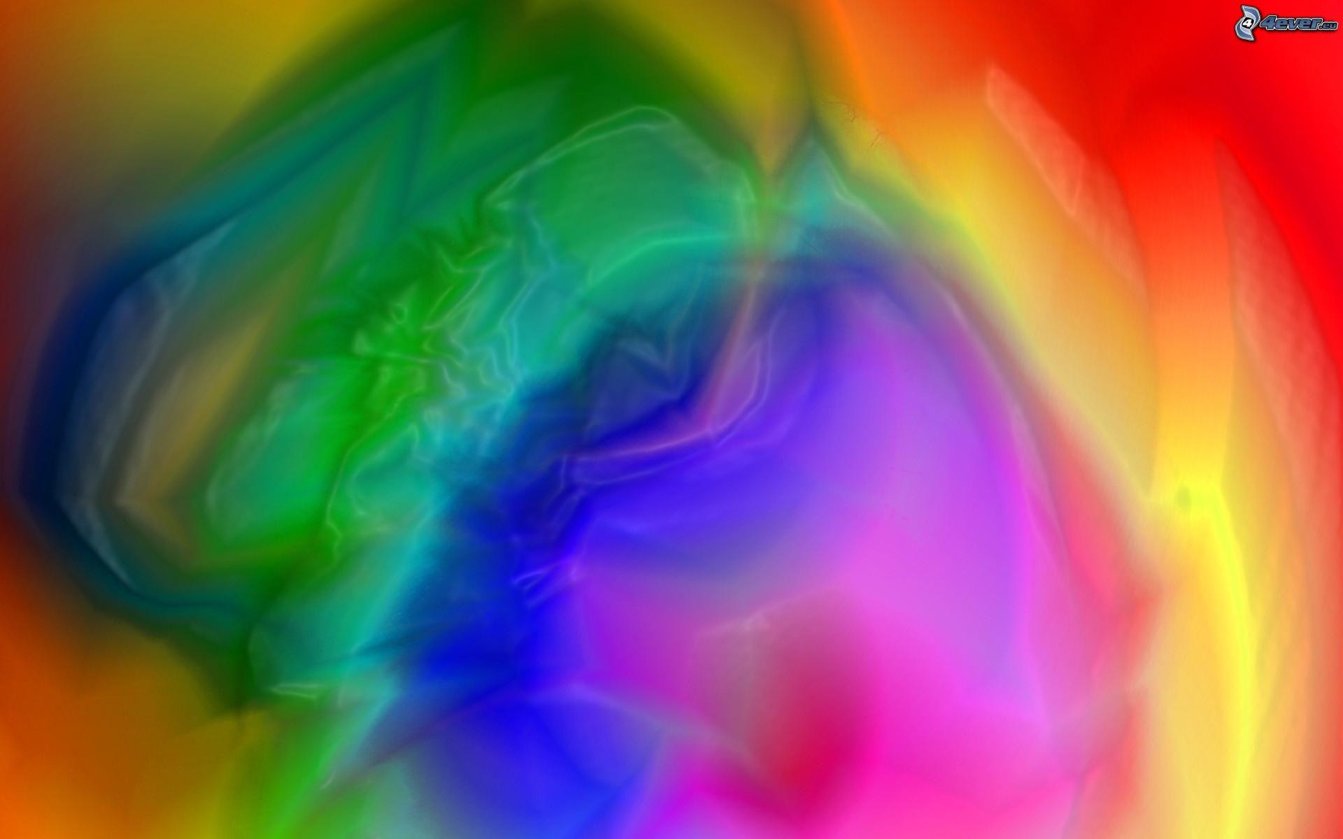 Colori di arcobaleno - Immagini di tacchini a colori ...