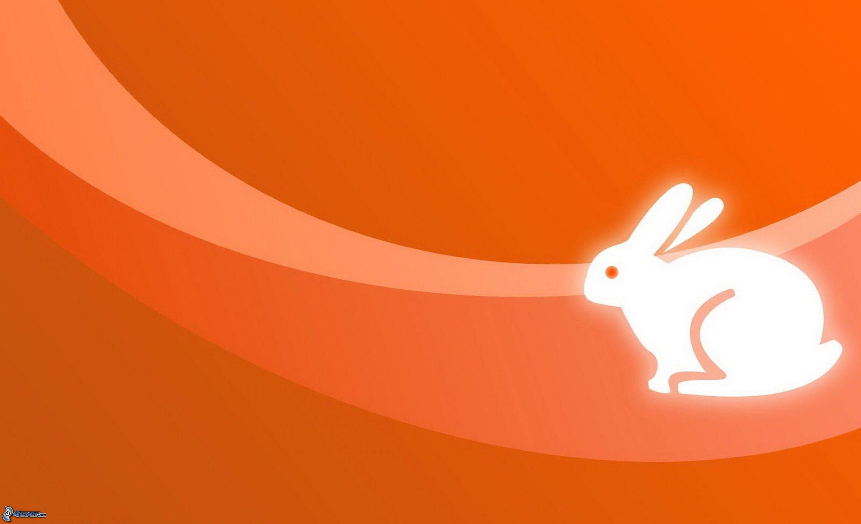 Coniglio del cartone animato