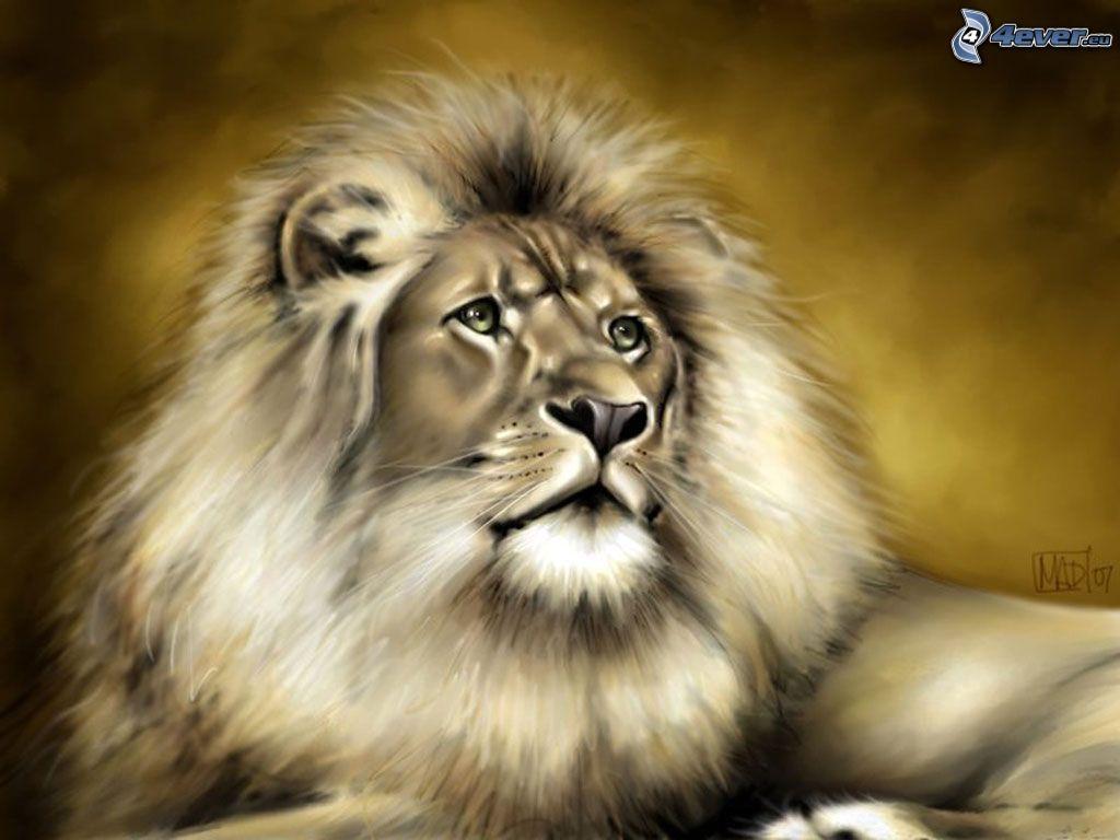 Leone disegnato for Immagini leone hd