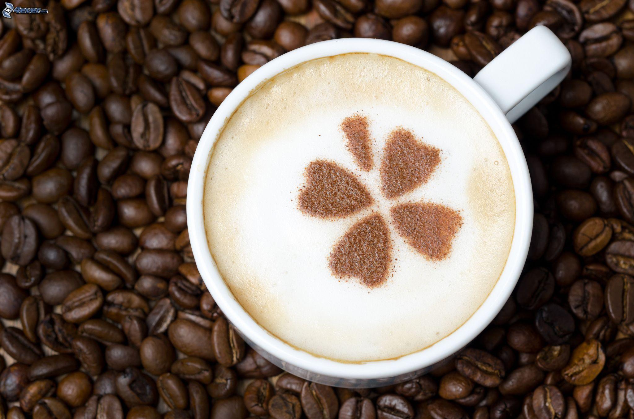 Estremamente Chicchi di caffè MZ58