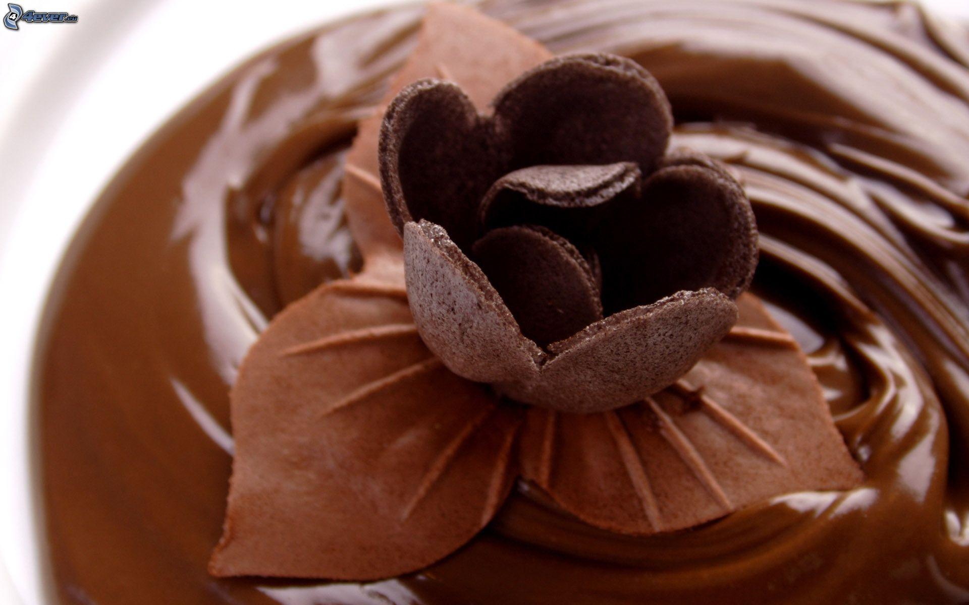 Amato Fiore di cioccolato MY72