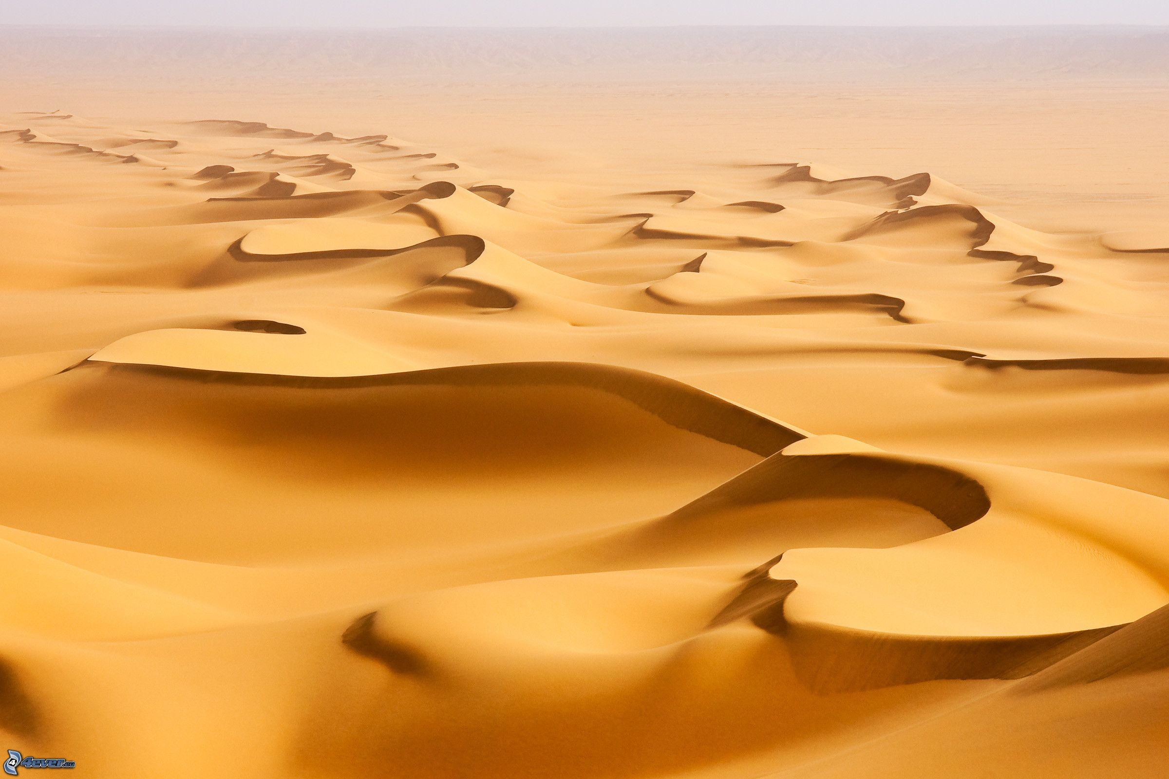 Dune di sabbia Underwater Sand Texture