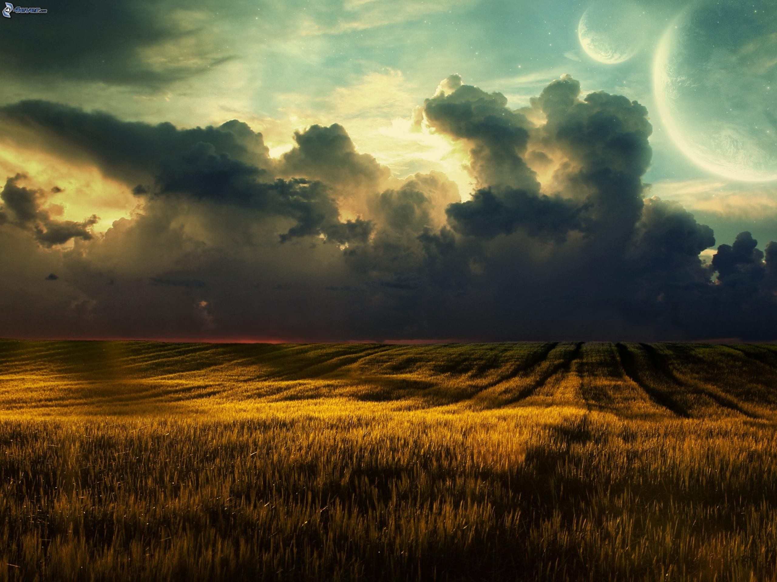 Campo di grano for Paesaggi fantasy immagini