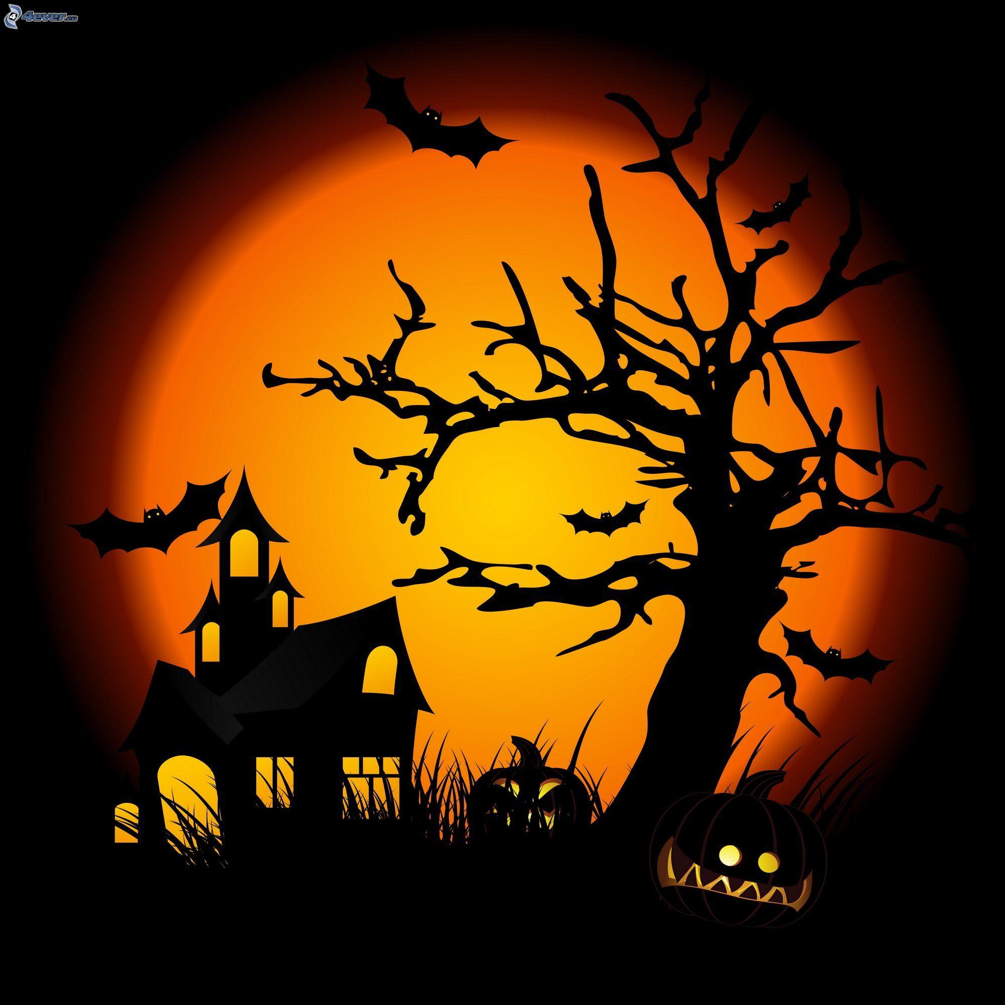 Casa di paura for Immagini zucche halloween